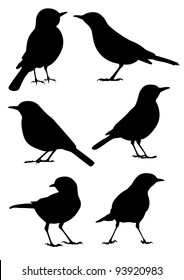 Birds Silhouette - 6 different vector illustrations