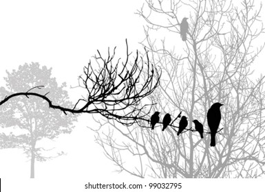 birds silhouette on wood branch, vector illustration