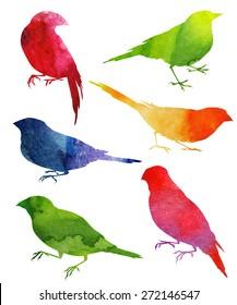 Birds Silhouette. watercolor illustration