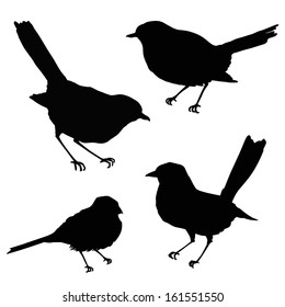 Birds silhouettes. Vector illustration isolated on white