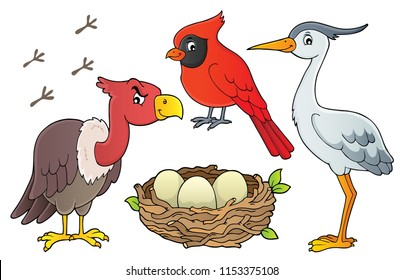 Birds topic collection - eps10 vector illustration.