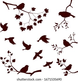 Birds and tree branch set