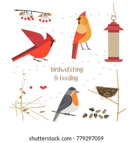 Birdwatching, bird feeding icon set. Red Northern cardinal, robin comic flat cartoon. Birds straw nest, feeder, sunflower seeds. Minimalism simplicity design. Wildlife banner sign. Vector illustration