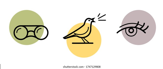 Birdwatching, hiking and sightseeing set of icons. A bird singing on a sunset, binoculars searching a landscape and a sightseeing eye.