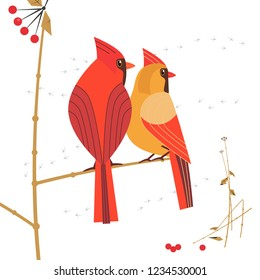Birdwatching icon. Red Northern cardinal couple comic flat cartoon. Winter birds of backyard, city garden. Minimal simple stylized bird design. Wildlife scavenger hunt banner sign. Vector illustration