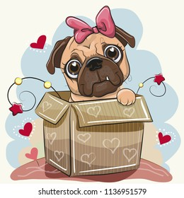Birthday card with a Cute Cartoon Pug Dog girl in the box