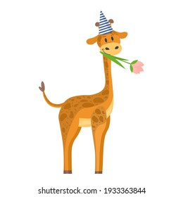 birthday of the giraffe. vector illustration in flat style. a giraffe with a cap on its head and a flower in its mouth. baby picture