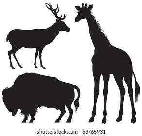 Bison, Deer and Giraffe, American, European and African herbivore wild animal silhouettes, vector image