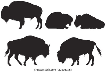 Bison group vector Silhouettes, American bison or American buffalo from the Wild West series