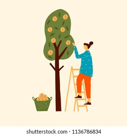 Bitcoin cryptocurrency concept illustration of women harvesting btc from the tree. Funny flat characters in vector illustrated blockchain mining.