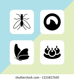 bite icon. 4 bite set with insect, mosquito from top view, bitterballen and shark fin vector icons for web and mobile app