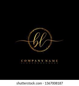 BL Initial luxury handwriting logo vector