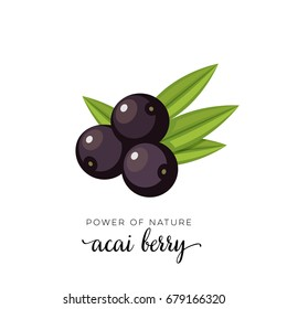 Black acai berry flat icon with inscription colorful vector illustration of eco food isolated on white.