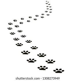 Black animal footprints