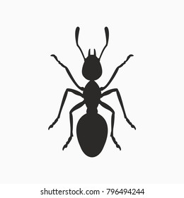 black ant insect icon