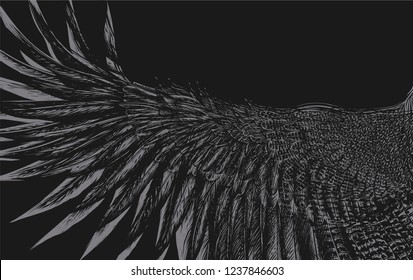 Black background with abstract pattern.