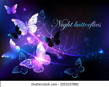 Black background with glowing night butterflies.