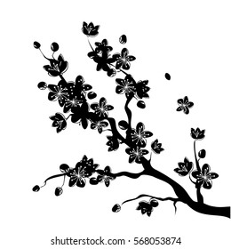 Black beautiful sakura or cherry blossom branch with flowers drawn in japanese style. vector illustration design.
