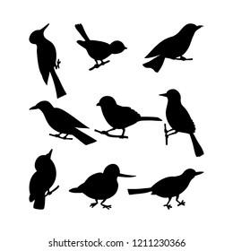 Black birds silhouettes