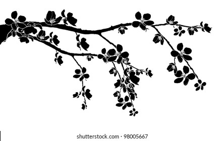 Cherry Blossom Branch Images Stock Photos Vectors Shutterstock
