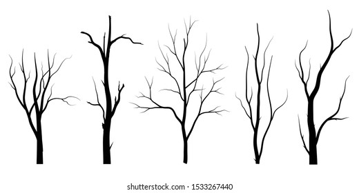 Black Branch Tree or Naked trees silhouettes set. Hand drawn isolated illustrations.