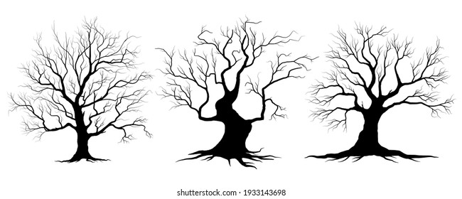 Black Branch Tree or Naked trees and root silhouettes set. Hand drawn isolated illustrations.