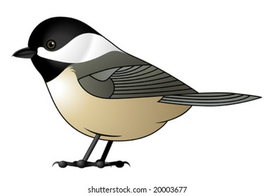 Black Capped Chickadee Vector