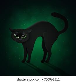 Black cat on green background, Halloween vector illustration