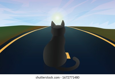 Black cat on the road under the clouds. Vector illustration with pet sitting on the asphalt for background, wallpaper, poster, banner, card. Travel landscape with road and sunrise