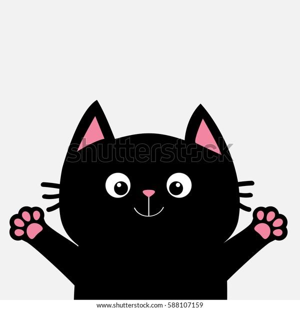 gatto nero zampa