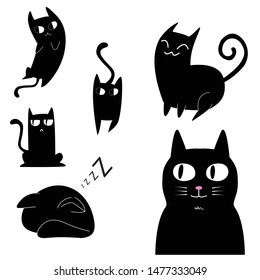 similar images stock photos  vectors of funny cat pose