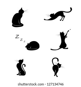 Black cat silhouette collections