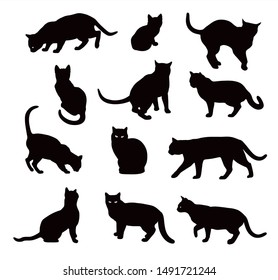 Black Cat silhouette vector set  isolated on white