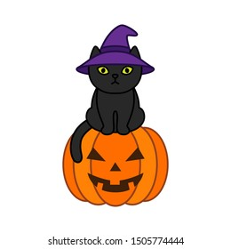 Black cat in a witch hat sits on a halloween pumpkin
