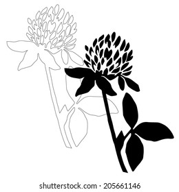 Black clover flower isolated on white background. Simple botanical illustrations set. Hand drawn sketch of a Trifolium. Line art and silhouette of a clover.