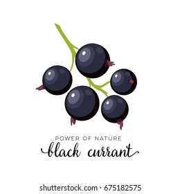 Black currant berry flat icon with inscription colorful vector illustration of eco food isolated on white.