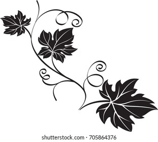 Black decorative design element grape branch with leaves on white background.