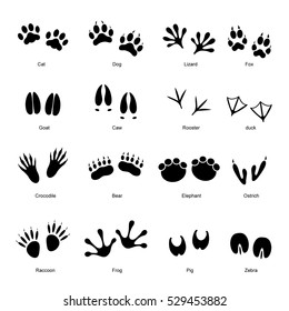 Black Different Animal and Bird Silhouettes Tracks Set with Name. Vector illustration