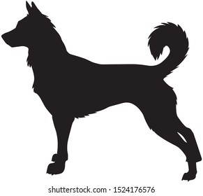 Black Dog silhouette isolated on white background