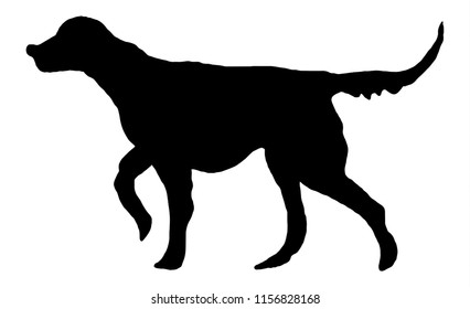 Black dog silhouette. Setter hunting dog, gundog illustration for design, banners, scrapbooking, prints, posters, t shirt design, fabric, advertising. Pet, mammal, wildlife, nature, fauna