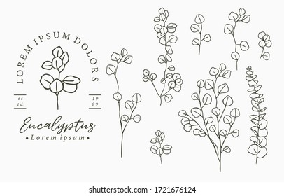 Black eucalyptus logo collection with leaves,geometric.Vector illustration for icon,logo,sticker,printable and tattoo