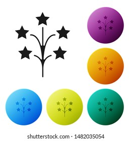 Black Fireworks icon isolated on white background. Concept of fun party. Explosive pyrotechnic symbol. Set icons colorful circle buttons. Vector Illustration