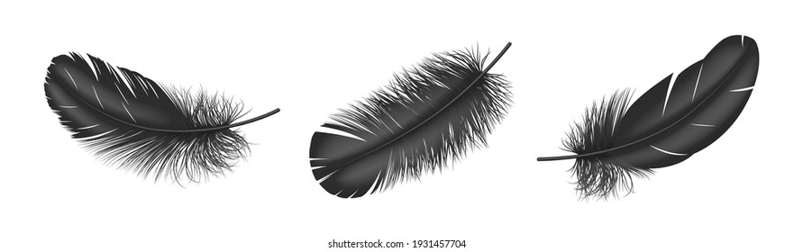 Black fluffy feather set realistic isolated on white background. Plume from wing of bird, detailed design element. 3d vector illustration
