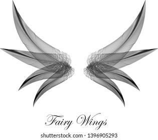 Black Gothic Wings - Dark Evil Magic Fairy Wings - Concept Vector Design Symbol on White