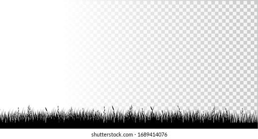 Black Grass Border Isolated Transparent  Background, Vector Illustration