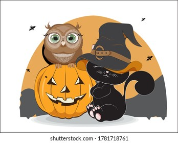 black Halloween baby cat in hat and owl on pumpkin. Picture for t-shirt wear fashion print design, greeting card, postcard. baby shower. party invitation