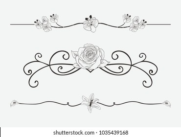 Black Hand Drawn Delicate Floristic Dividers, Line Borders with Branches, Plants, Flowers, Swirls and Scrolls. Decorative Outlined Vector Illustration. Floral Text Dividers