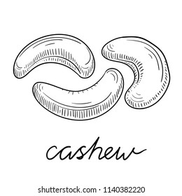 Black hand-drawn cashew sketch isolated on white background. Vector paper illustration.