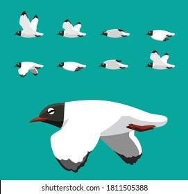 Black Head Gull Flying Animation Sequence Cartoon Vector