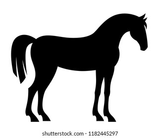 Black horse on a white background